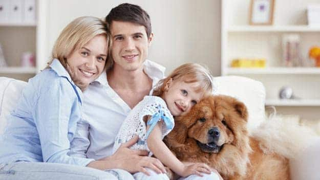 Wills & Trusts dog-young-family Direct Wills Buckinghamshire